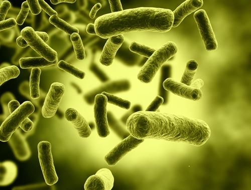 A recent listeria outbreak has made consumers cautious.